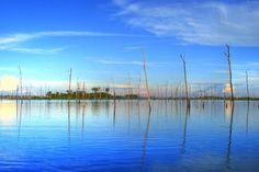 Águas de Pontal: Protótipos solares para fortalecer hidrelétricas.