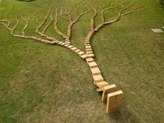 This is not a tree. It's the wooden domino tree by Qiu Zhijie.    Wanna see more behind the physics of the domino chain reaction?   Check here and you will be really surprised! http://www.youtube.com/watch?v=y97rBdSYbkg=player_embedded#!