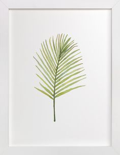 I'm Frond of You No. 2 by Andi Pahl at minted.com