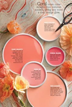 Yes, coral! Coral is definitely in the palette. Wall Colors, House Colors, Coral Paint Colors, Peach Colors, Coral Colour, Accent Colors, Flower Colors, Coral Color Palettes, Playroom Paint Colors