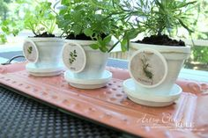 DIY Decorative Clay Pots with Herbs (decorating challenge)