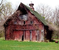 This barn looks magical and about ready to collapse.