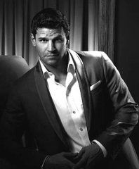 David Boreanaz--love him. I know he may be a dirty dog in real-life but he sure is nice to look at.