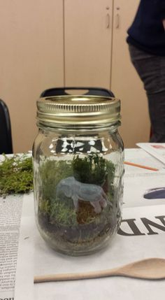 DIY Terrarium Workshop – Library Program Guide for Adults