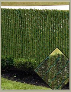 HedgeLink Slats HedgeLink™ slats create a natural hedge look on chain link fence with no maintenance, water or trimming. Get all of the convince of a chain link fence with the beauty and privacy of a hedge with these foliage chain link fence slats. Privacy Landscaping, Backyard Privacy, Low Maintenance Landscaping, Backyard Fences, Garden Fencing, Front Yard Landscaping, Farmhouse Landscaping, Front Yard Fence, Farm Fence