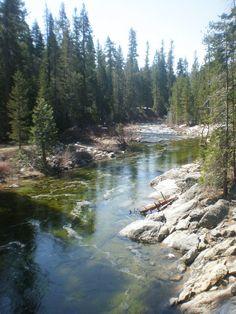 Dinky Creek - Sierras, CA