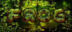 Frog style by sonarpos on DeviantArt Photoshop, Deviantart, Brushes, Style, Stylus, Blushes, Makeup Brushes
