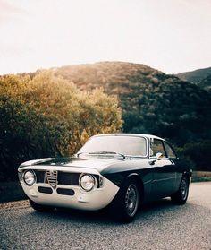 Alfa Romeo Giulia by @Petrolicious