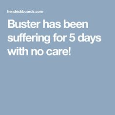 Buster has been suffering for 5 days with no care!