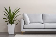 Adams Chaise Sectional Sofa with Ottoman, Dove Grey, Right Facing, Brass Small Living Rooms, Home Living Room, Buy Sofa, Free Fabric Swatches, Classic Living Room, Round Ottoman, Sectional Sofa, Couch, Sofas