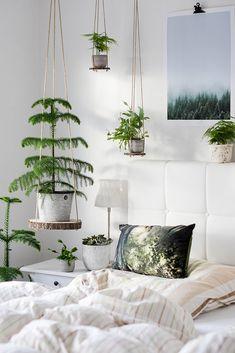 DIY Hängeregale - hole dir deinen Urban Jungle ins Haus - Home and Herbs Bedroom Plants, Bedroom Decor, Jungle Bedroom, Interior And Exterior, Interior Design, Diy Hanging Shelves, Inside Plants, House Plants Decor, New Room