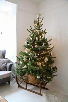 Sapin de Noël posé sur un traîneau
