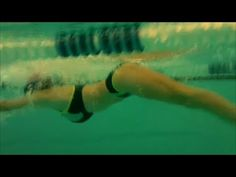 Butterfly swimming technique, training for beginners. Esercizi nuoto delfino principianti. - YouTube