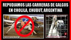 REJECT greyhound racing in CHOLILA, Chubut, Argentina | Click for details and please SIGN and share petition. Thanks.