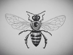 honey bee tattoo | Tumblr