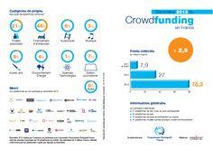 Barometre 2013 #emarketing #crowdfunding