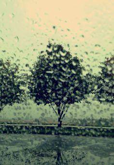 Rain#norway