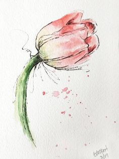 "Original artwork of a lovely single watercolor tulip rendered in pen, ink and watercolor. It is titled ""Pink and Green Tulip Flower"" and is signed and dated at the bottom with the title on the back. This lovely tulip watercolor flower is painted in wonderful soft shades of pink"