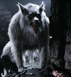 William Corvinus first Werewolf twin brother of Marcus Corvinus and son Alexander Corvinus from the Underworld Evolution Mythological Creatures, Fantasy Creatures, Mythical Creatures, Bark At The Moon, Howl At The Moon, Dark Fantasy, Fantasy Art, Apocalypse, Of Wolf And Man