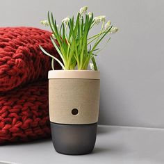 Ø 20 Terracotta Planter by D&M Depot | MONOQI #bestofdesign