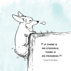 """""""If there is no struggle, there is no progress."""" Come on darlings, it's almost Friday, we can do this. #quotes #corgis"""
