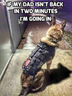 """Paws Up"" to the police dogs who fight the bad guys everyday. Thank you for your service. Stay Safe!"