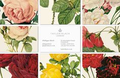 old lithographic style flowers in the branding for British jewelry designer Taylor Black