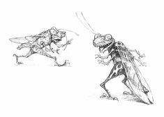 smallgrasshoppers