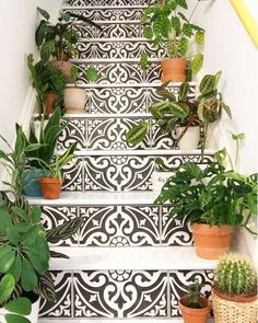 Tiles + Stairs + Plants 🌱🌱 What else? Photo by Staircase Outdoor, Tiled Staircase, Staircase Design, Tile Steps, Exterior Tiles, Outdoor Steps, Outdoor Tiles, Front Steps, Coastal Living Rooms