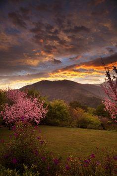 Sunrise in Qilan Forest | Taiwan | Photo By ydchiu
