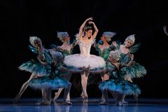 The Sleeping Beauty at The Australian Ballet, 2015. Production by David McAllister, costume design by Gabriela Tylesova.