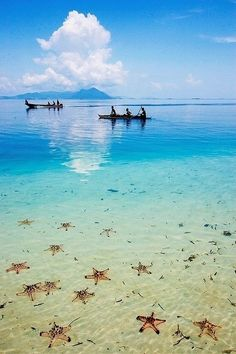 Semporna, Sabah - Borneo, Malaysia #semporna #sabah #borneo #malaysia #sempornasabah #borneomalaysia #ocean #clear #water #sand #starfish #boats #clouds #sky #blue #turquoise #teal #travel #tranquility #peace