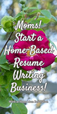 How To Start A Resume Writing Business 10 Considerations For Choosing The Right Resume Writer  Mac's List .