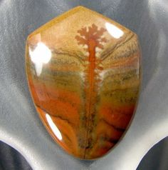 NATURAL STONE: Owyhee Picture Jasper