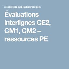 Évaluations interlignes CE2, CM1, CM2 – ressources PE