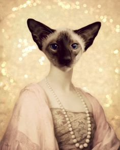 Cat Art Print Siamese Cat Mixed Media Collage by Watchful Crow on Etsy