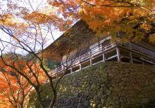 おおいた風景写真集 | 日本一の「おんせん県」大分県の観光情報公式サイト