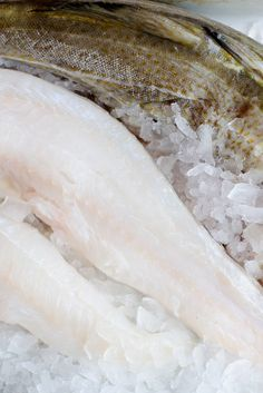 Excellent cod recipes from Great British Chefs, including fish and chips, cod fillet, roast cod and salt cod.