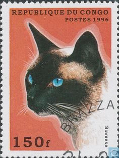 Postage Stamps - Congo-Brazzaville [COG] - Cats
