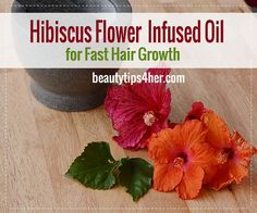 DIY Hibiscus Flower Infused Oil For Hair Growth | Beauty and MakeUp Tips