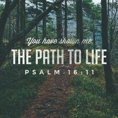 You lead I follow