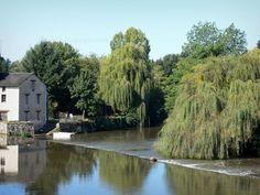 Civray: Fleuve Charente, arbres au bord de l'eau - France-Voyage.com