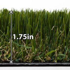 Natco Tundra 7-1/5 ft. x Your Choice Length Fresh Cut Artificial Turf-PRT042054-7.5LF - The Home Depot