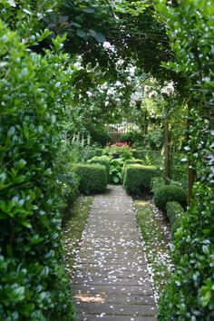 Ryan Gainey garden path with rose petals