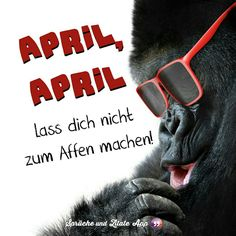 April April, Deadpool, Comedy, Humor, Mai, Quotes, Working Holidays, Seasons Of The Year, Easter Activities