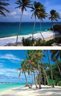 Experience the ultimate Caribbean experience with an Antigua holiday