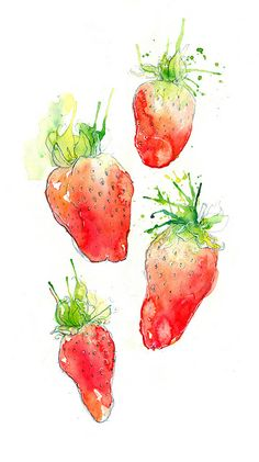 Strawberries III by amwah on DeviantArt - Obst Desserts Watercolor Fruit, Watercolor Cards, Watercolor Illustration, Watercolour Painting, Watercolors, Strawberry Art, Strawberry Shampoo, Fruit Art, Easy Healthy Breakfast
