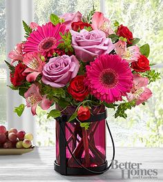 Hot Pink Gerbera Daisy And Lavender Rose Bouquet at Send Flowers. Dark pink mixed flowers bouquet with pink gerbera daisies, purple roses and dark pink vase. Valentines Flowers, Mothers Day Flowers, Send Flowers, Valentine Bouquet, Valentine Ideas, Vase Arrangements, Flower Arrangement, Centerpieces, Same Day Flower Delivery