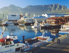 Designs on Cape Town: History, high living and a hopeful South Africa Oh The Places You'll Go, Places To Visit, Boulder Beach, Cape Town South Africa, Table Mountain, Baboon, Beautiful Places, Scenery, Jet