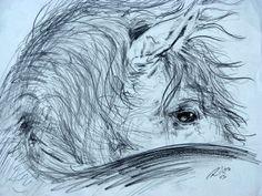 'Equo' Pencil, Roberto Rico